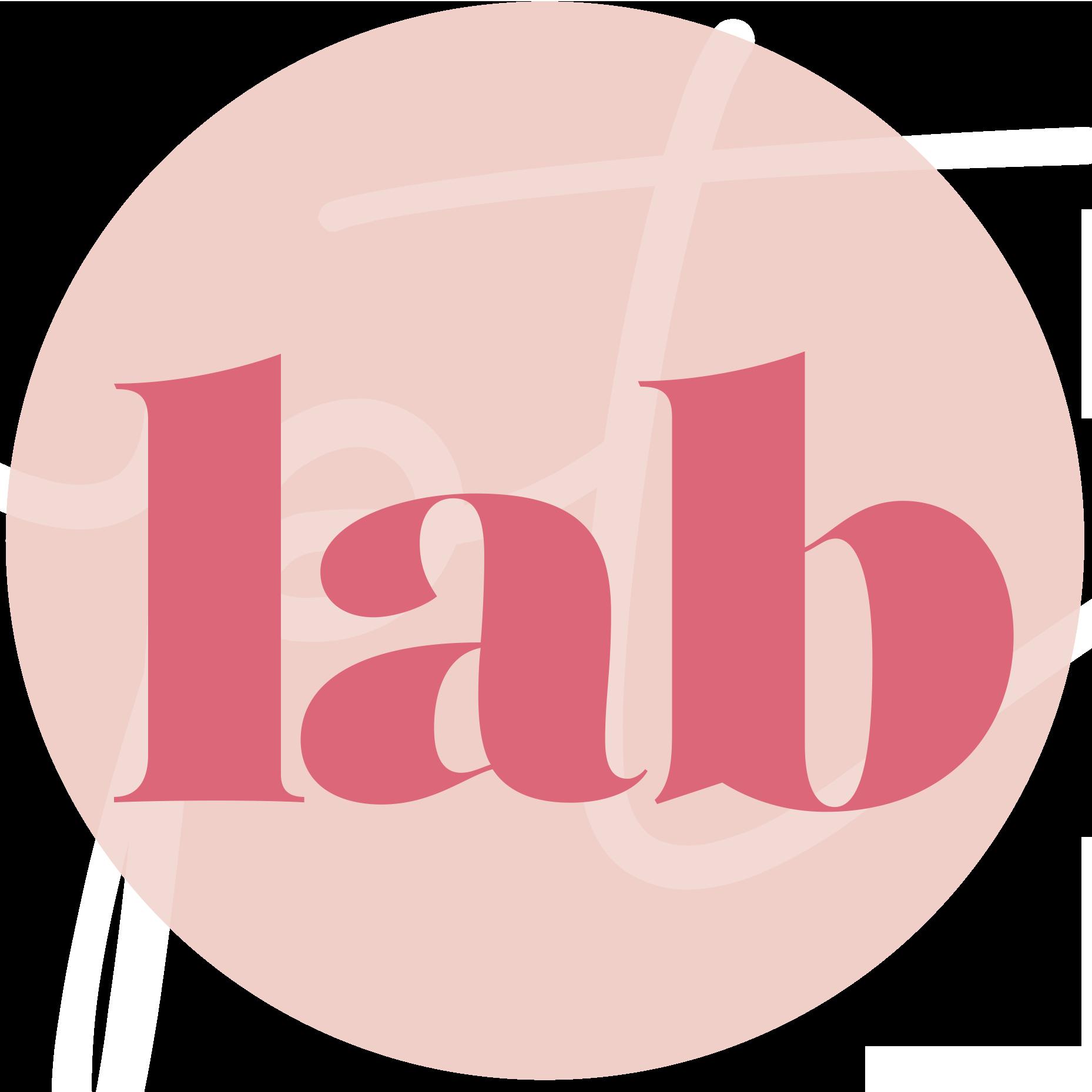 Paola Toini Lab